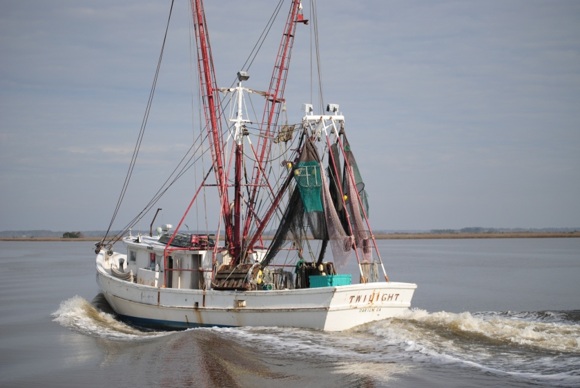 Shrimp Boat2