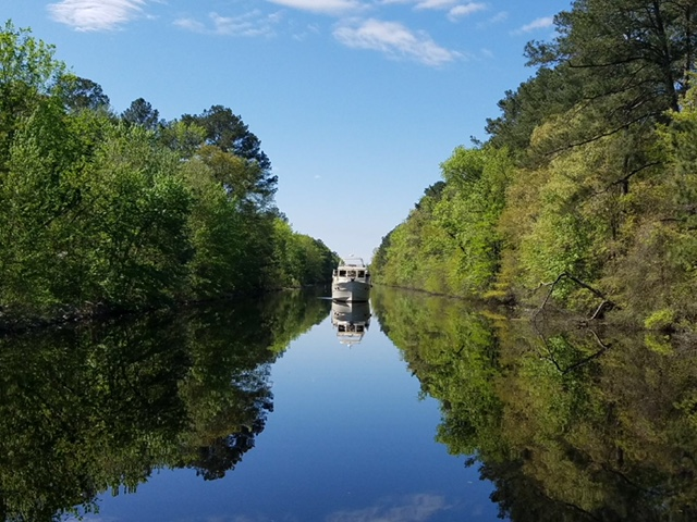 Dismal Swamp Not So Dismal