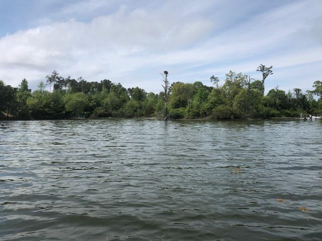 DeltaVille Cove