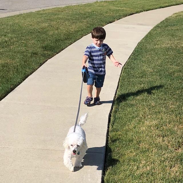 Walking Maddie